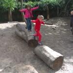 liggende boomstam_foto